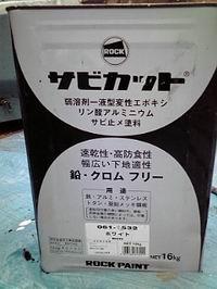 20100130105831.jpg
