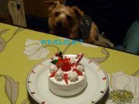 ジュとケーキ