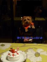フロとケーキ