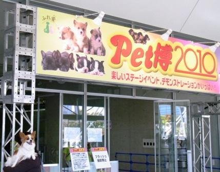 Pet博2010