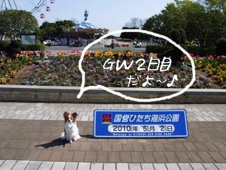 GW2日目