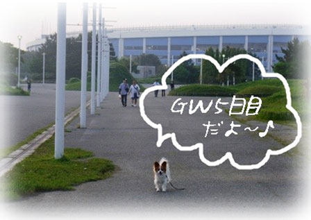 GW5日目