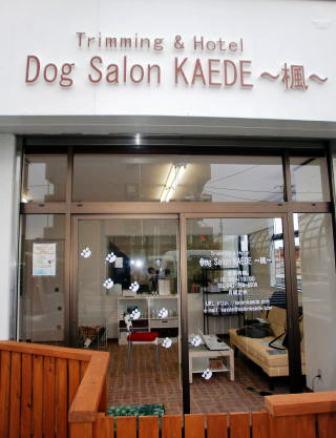 Dog Salon KAEDE