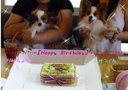 りりちゃん&レオンくんHappy Birthday☆