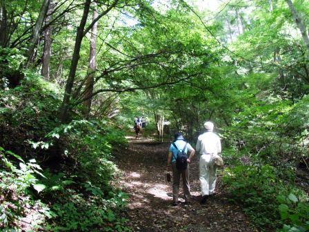 野鳥の森ハイキング