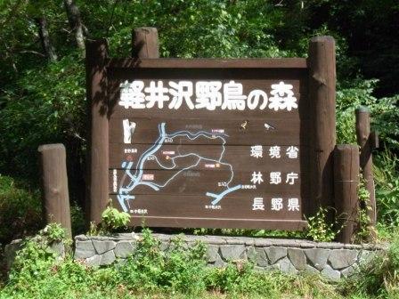軽井沢野鳥の森