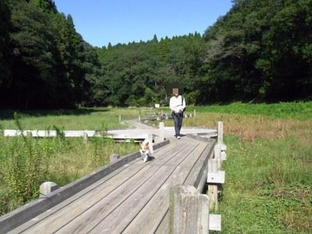 昭和の森公園ハイキング2
