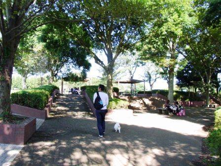 昭和の森公園入口