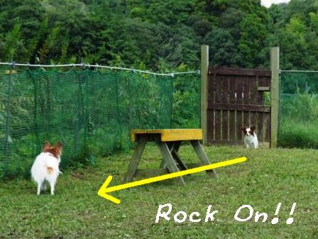 ラビRock On!!