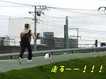 走るーー!!