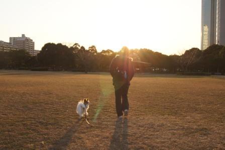 夕日の中でお散歩