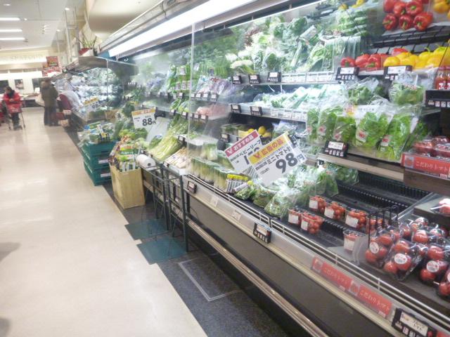 春野菜 001