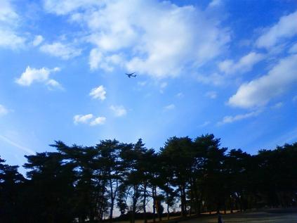 江戸崎飛行機