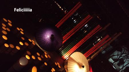 20100221_09.jpg