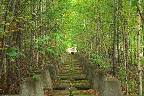 20111228 曲がり道.jpg