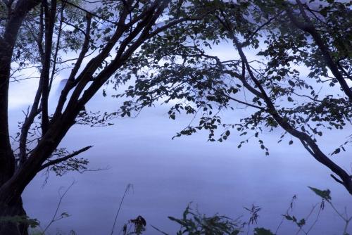 20120415 水のように.jpg