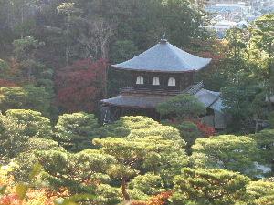2009_1116京都&滋賀旅行ブログ2