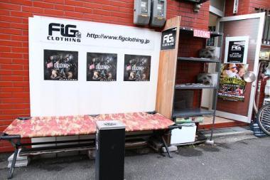 FIG1F_1.jpg
