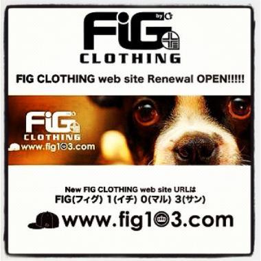 GSOblog_GlicoFIG.jpg