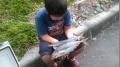 PAP_0986_20131104130127962.jpg