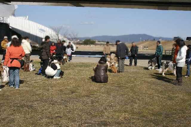 2010,第1回家庭犬訓練勉強会