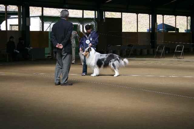2010三重春季展覧会 ゼッチの雄姿?