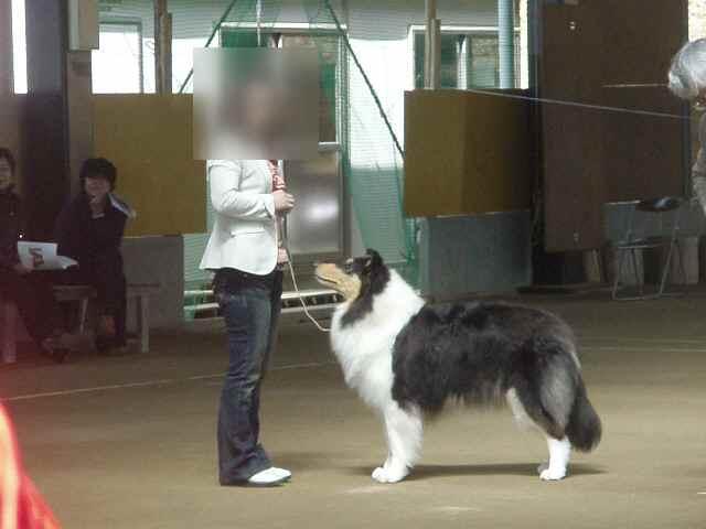 オープンクラスメス組覇者!ねねちゃん!!