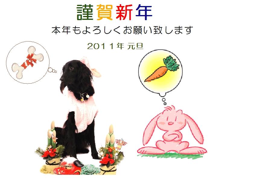 2011ブログ用年賀状