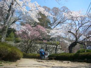 20080405筑波山神社、一言主神社1