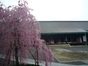 京都vol.1-2