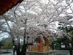 京都vol.1-4