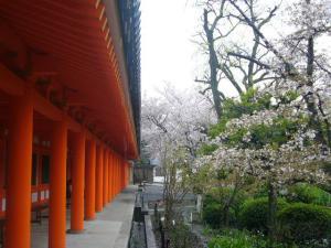 京都vol.1-5