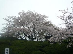 京都vol.1-7