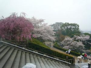 京都vol.1-10