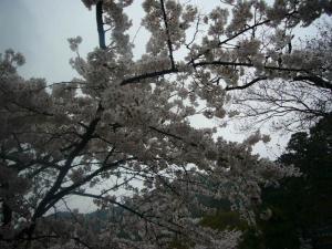 京都vol.1-13