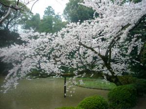 京都vol.2-9