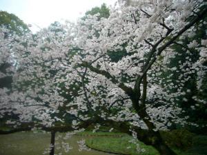 京都vol.2-11