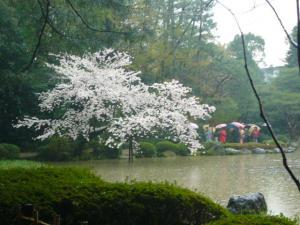 京都vol.2-12