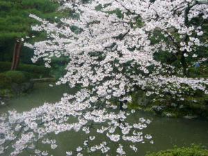 京都vol.2-14