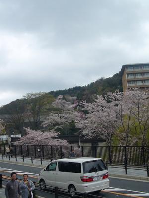 京都vol.1(2008年4月8日)14