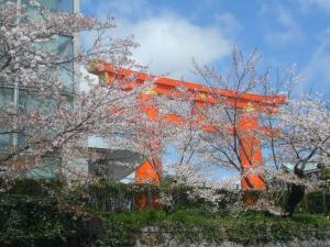 京都vol.2(2008年4月8日)2