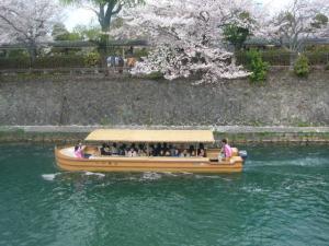 京都vol.2(2008年4月8日)7