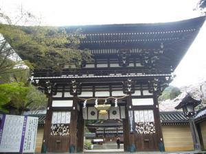 京都vol.2(2008年4月8日)12