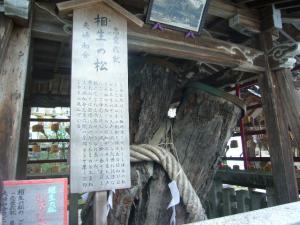 京都vol.2(2008年4月8日)16