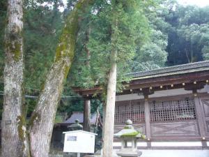 京都vol.2(2008年4月8日)17