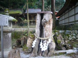 京都vol.2(2008年4月8日)18