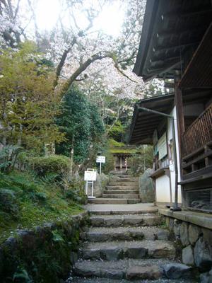京都vol.2(2008年4月8日)23