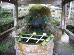 京都vol.2(2008年4月8日)24