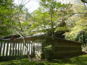 20080415皇祖皇太神宮、酒列、大洗磯前神社8