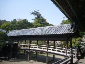 20080415皇祖皇太神宮、酒列、大洗磯前神社9